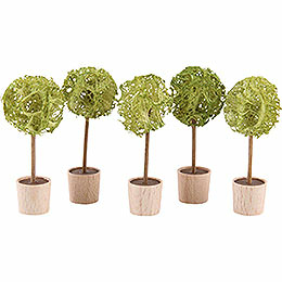 Almond Tree, Set of Five  -  5cm / 2 inch