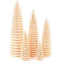 Coiled Trees without Trunk  -  5 pieces  -  12cm / 4.7 inch